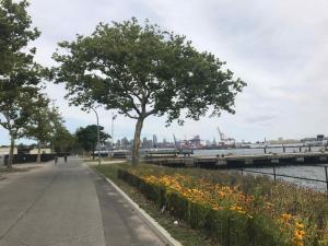 Auf der Ostseite: alleenartige Anlagen und Blick auf den Hafen von Brooklyn