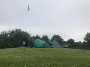 Von Wurten und Warften - Camping hinterm Deich. Wir waren wie bereits 2017 völlig autark unterwegs und haben den Kontakt zu Menschen gesucht.